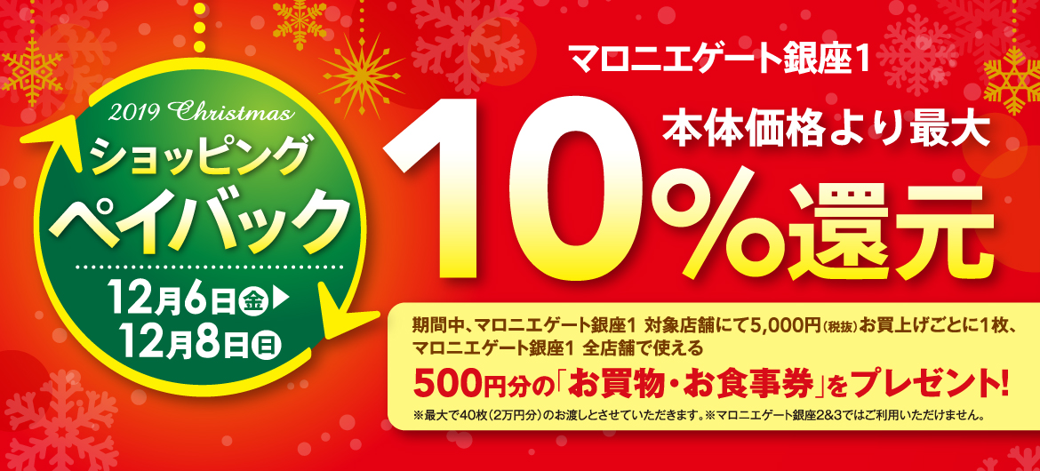 2019 Christmas ショッピングペイバック